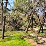 Foto Parque Quinta de los Molinos 59