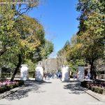 Foto Parque Quinta de los Molinos 61
