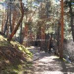Foto Ruta y Chorrera del Hornillo 2