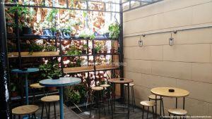 Fotos Mercado de San Ildefonso 3